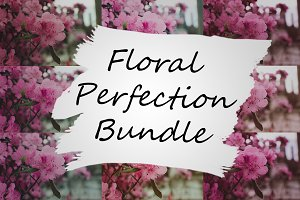 LR Preset Bundle: Floral Perfection