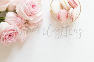 Pink Macaroon Styled Stock