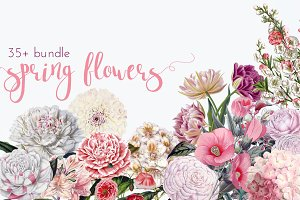 Vintage Spring Flowers Graphic Set