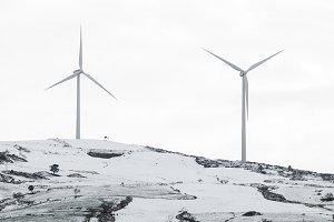 Renewable energy windmill