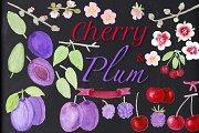 CHERRY & PLUM set clipart, patterns