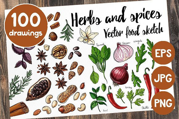 Sketches Herbs And Spices