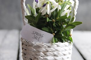 Spring sale tag and Bouquet of snowdrops in a wicker basket