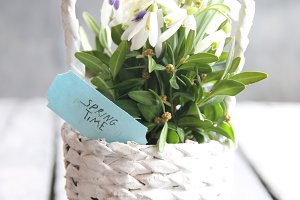 Spring time tag and Bouquet of snowdrops in a wicker basket