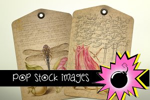 Vintage Fruit and Floral French Tags