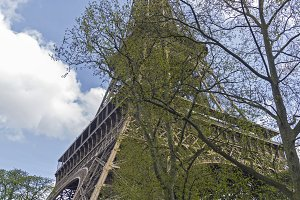 Eiffel Tower.Spring.