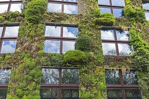 """Green House"" in Paris."