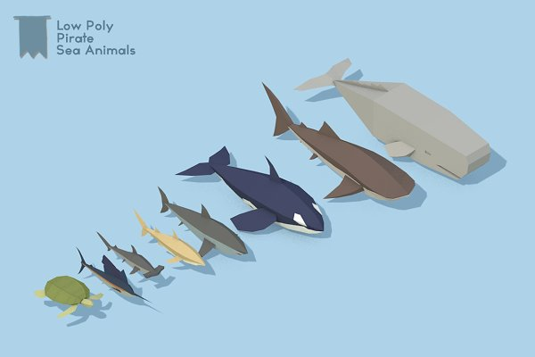 Animal: Addixon - Low Poly Pirate Sea Animals