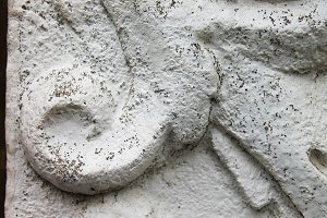 Relief in a Stone Detail