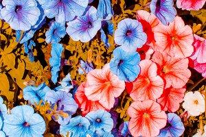 floral background art design