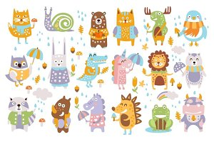 Animal Woodland Autumn Vector