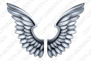 Silver Metal Wings