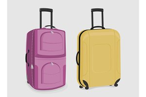 Two sturdy suitcases