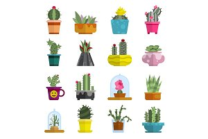 Nature succulent home cactus tropical plant vector illustration.