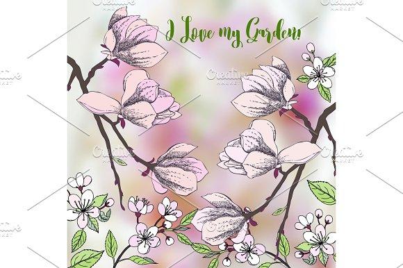 Background With Sakura And Magnolia