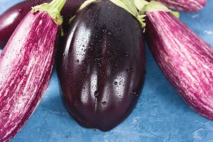 Eggplants on blue textured background