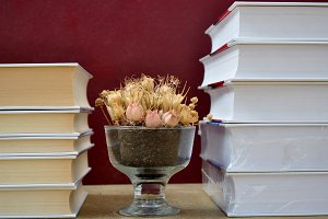Books and vase with dry flowers