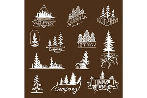 Forest badge tree vector collection