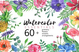 Watercolor Essentials