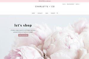 Minimalist Feminine Shopify Theme