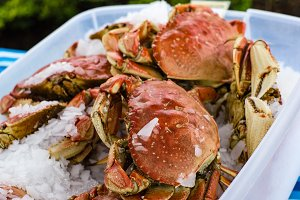 Fresh Dungeness crab at the market