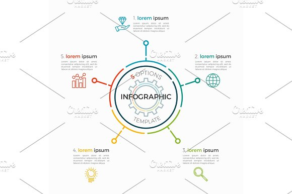 Thin Line Infographic Template 5 Options Editable Chart Stroke