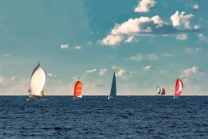 Sailboat regatta at summer
