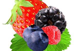 Fresh berries on white