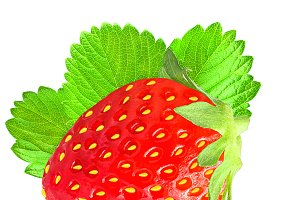 One strawberry with leaf isolated