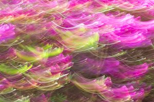 Abstract wave background image of azalea flowers with a motion blur effect
