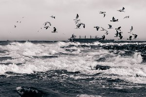 Baltic sea in stormy weather