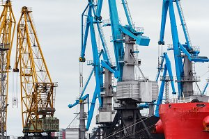 Blue cargo cranes