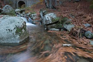 mountain river in autumn in Montseny