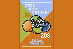 Color vintage organic food banner
