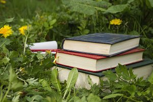 books on the grass