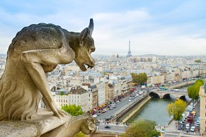 Gargoyle of  Paris