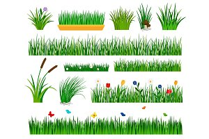 Growing grass template for garden