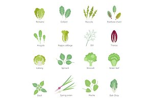 Leafy vegetables vector flat icons set.