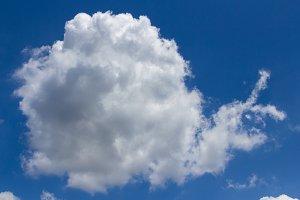 Cloud snail