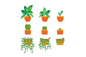 Green Plants in Pot Set. Vector