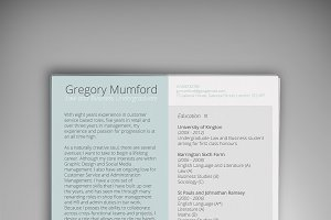 MINT CV/Resume