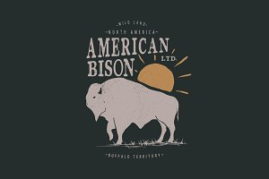 Vintage label with american bison
