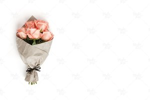 Pink roses photography #4085