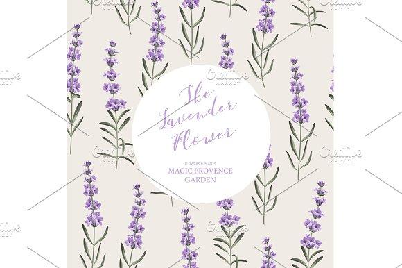 The Lavender Elegant Card