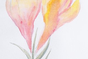 Flower with watercolor paint