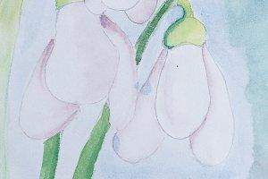 Bellflower flower with watercolor
