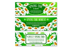 Spring daisy flowers banner set design