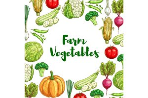 Vegetables poster for organic farm food design