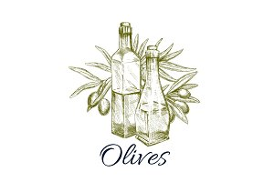 Olive oil sketch label design with branch, fruit