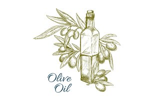 Olive oil bottle and olives branch vector sketch